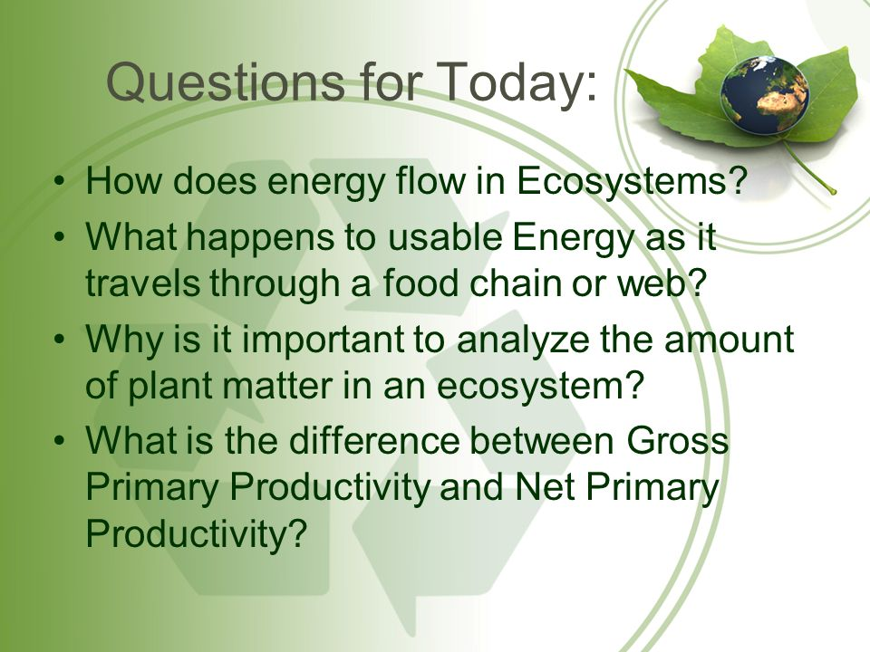 Questions for Today: How does energy flow in Ecosystems