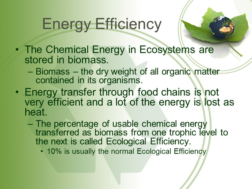 Energy Efficiency The Chemical Energy in Ecosystems are stored in biomass.