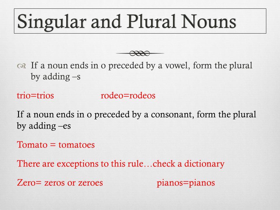 NOUNS Singular and plural nouns Possessive Nouns Appositives - ppt ...