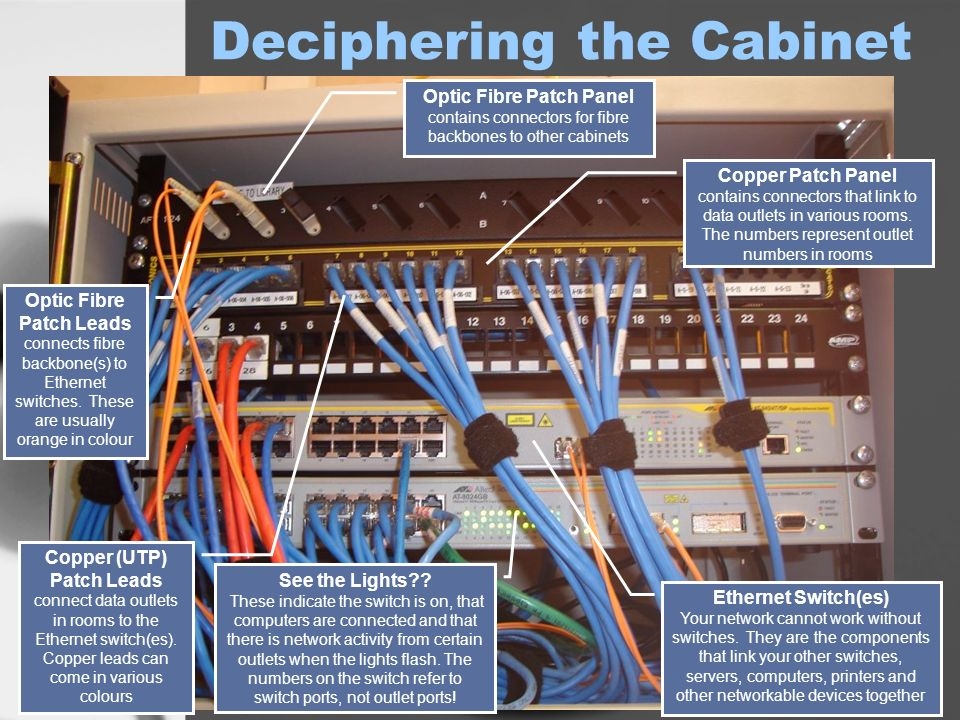 Deciphering The Cabinet