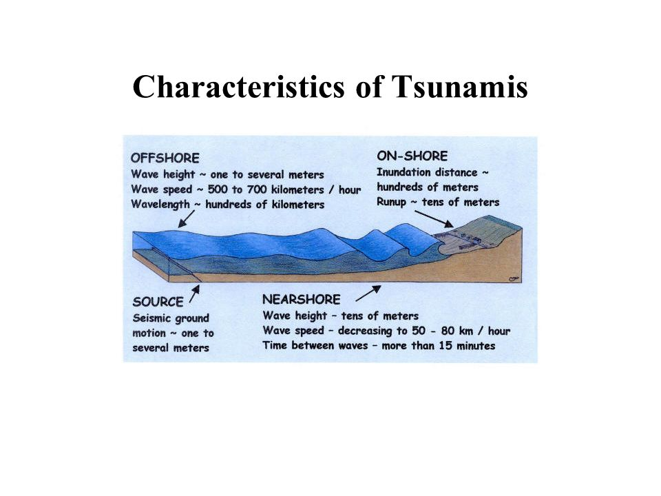 characteristics of the tsunami What are the characteristics of tsunamis tsunami are caused when the forces of these phenomena rapidly displace large amounts of water.
