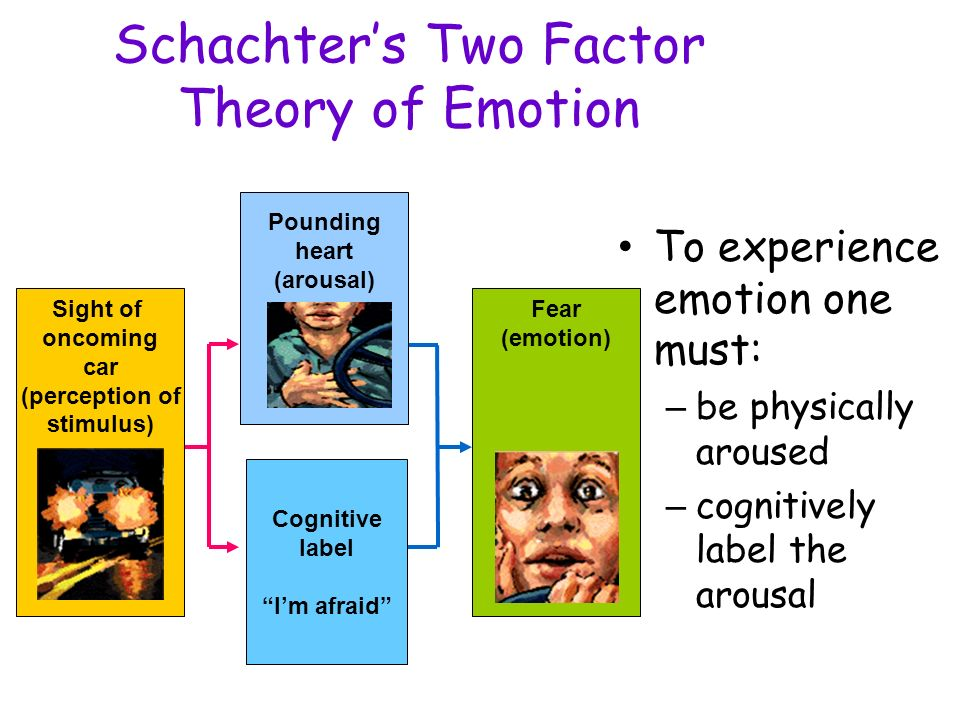 the schachter singer theory Schachter and singer developed the two-factor theory of emotion the two-factor  theory suggests that emotion comes from a combination of a state of arousal.