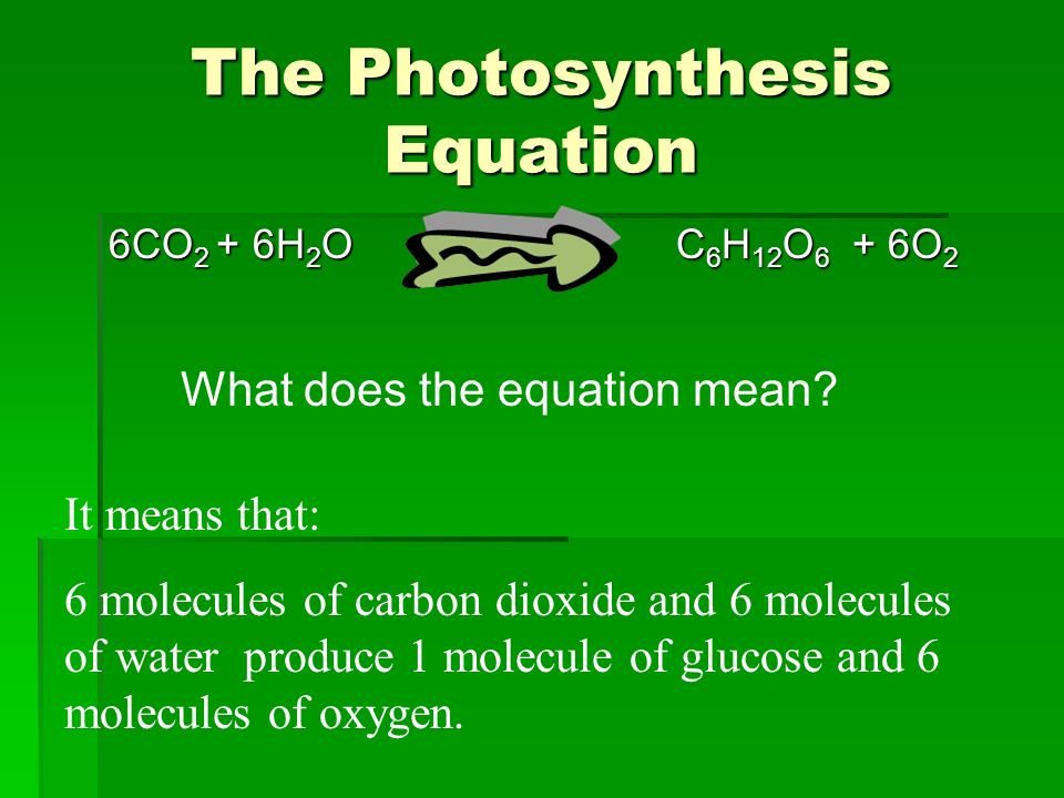 write the equation for photosynthesis Cellular respiration can be broken down be able to write the overall equation for cellular respiration how does it compare to the equation for photosynthesis.