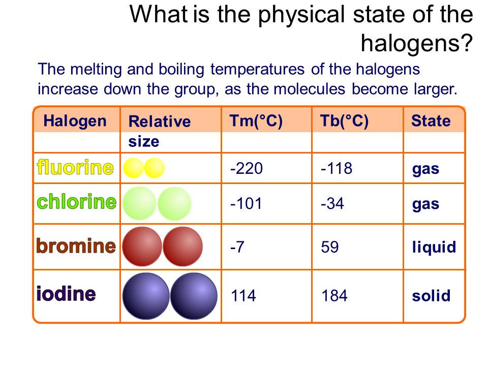 What is the physical state of the halogens