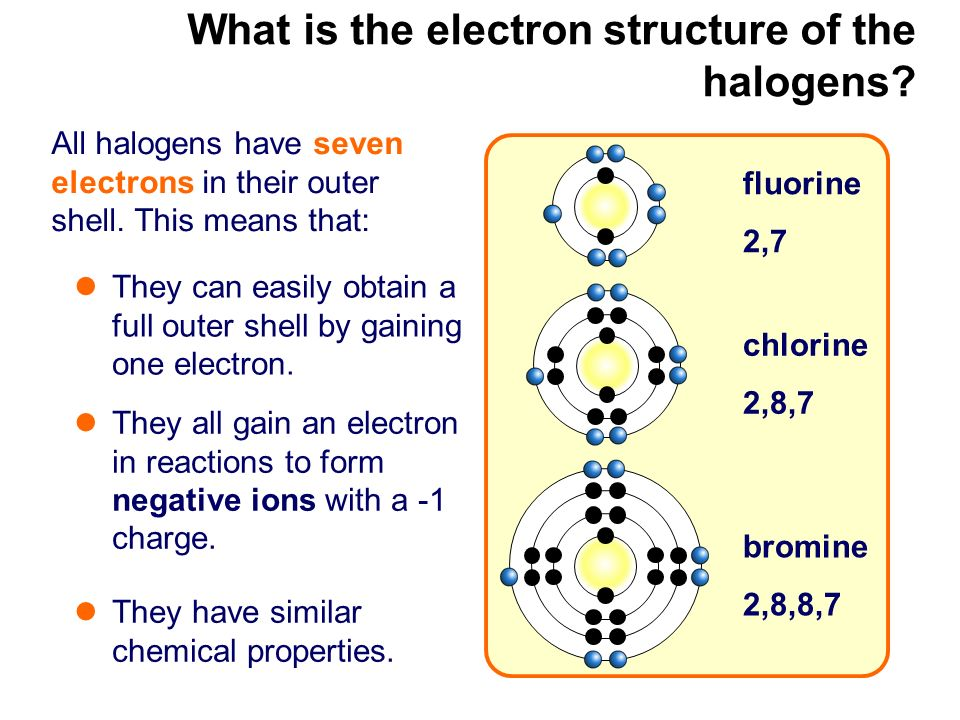 What is the electron structure of the halogens
