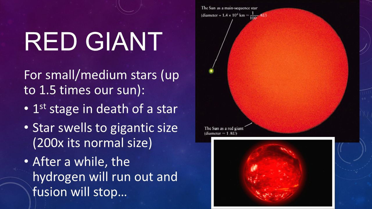the sun is also a star read online pdf