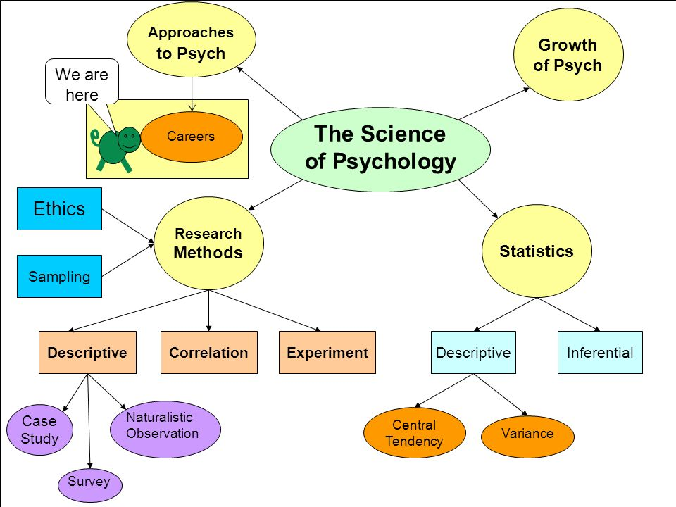 the 7 psychology science approaches 4 the science of psychology and behaviour/mind, cognit- ive psychology looks at basic mental processes, and so on here is a list of the many sub-fields of psychology: abnormal psychology: nature and development of abnormal.
