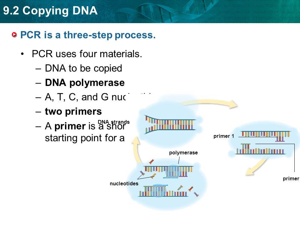 PCR is a three-step process.