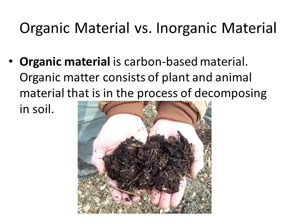The nitrogen cycle the basics ppt download for Mineral soil vs organic soil