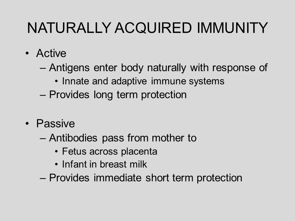 innate and acquired immunity mother infant relationship