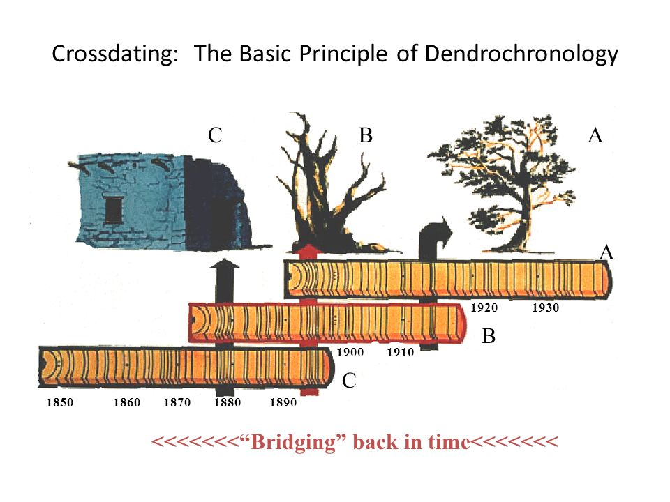 crossdating principle Definition of cross-dating 'he extended the principle of cross-dating, thus providing a chronological framework for his bronze age sequence.