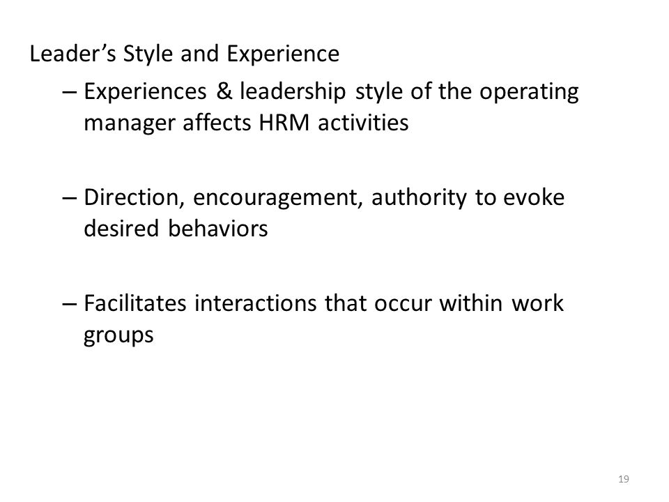 Leader's Style and Experience