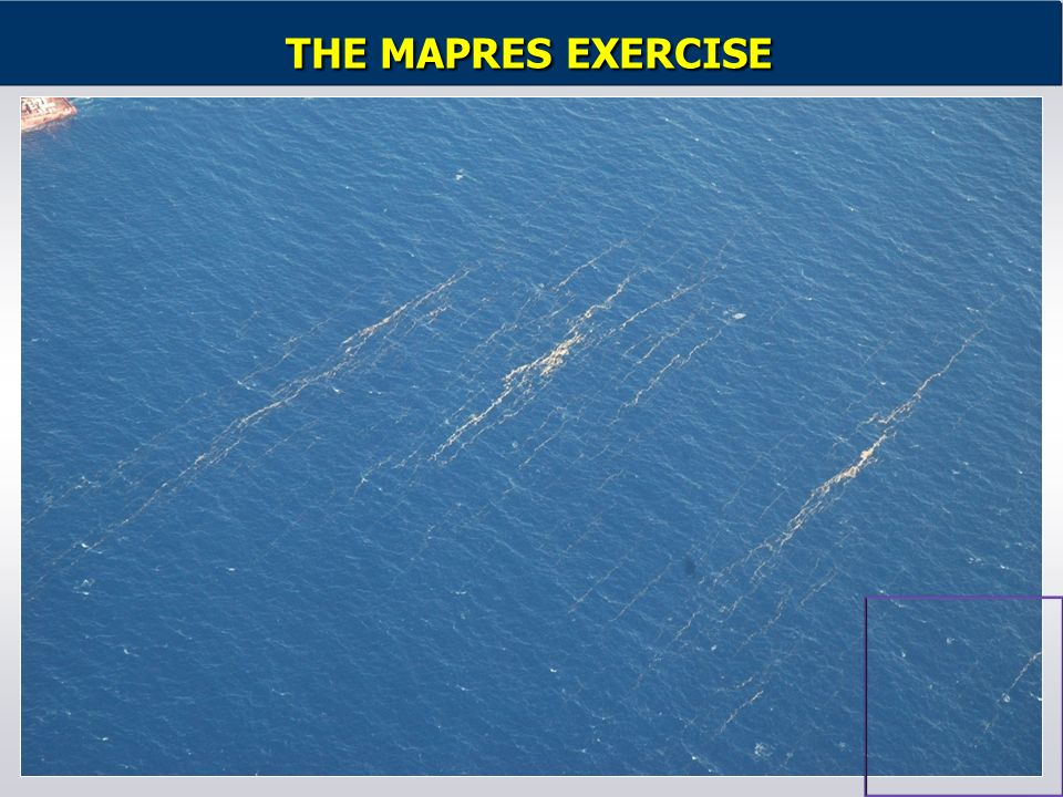 THE MAPRES EXERCISE