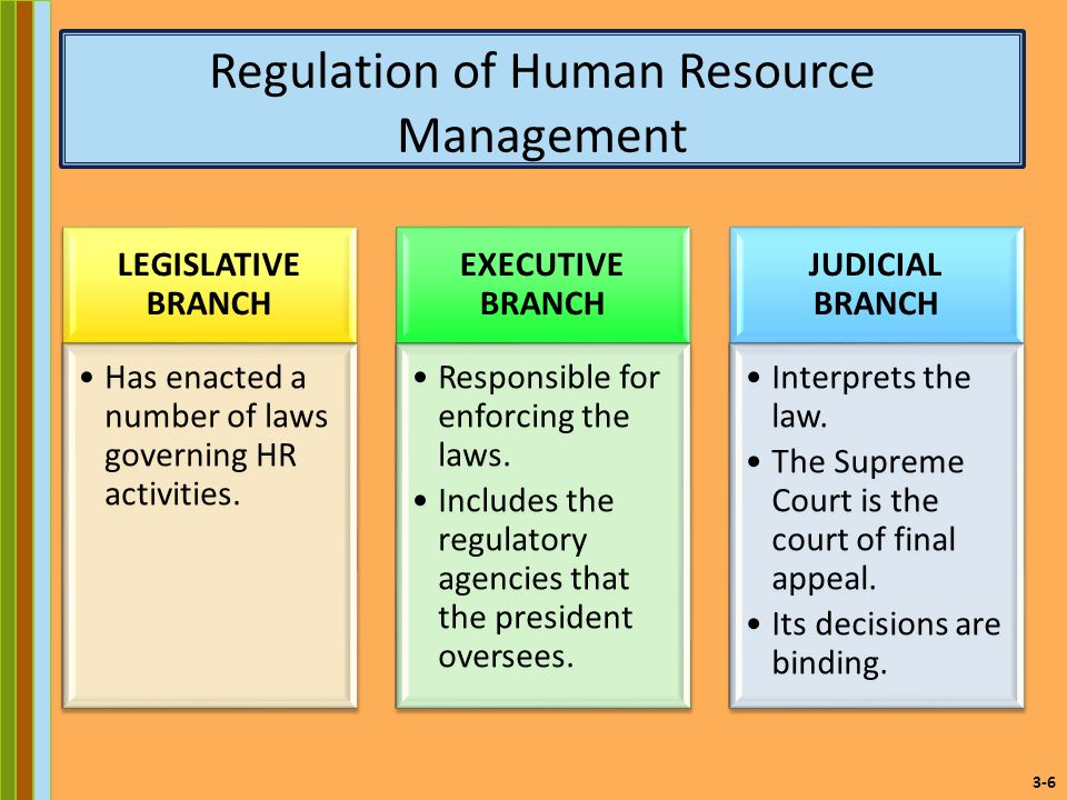 an overview of the roles of the legislator the judge and the executive in interpreting laws The president, the constitution says, must take care that the laws be faithfully  executed  despite the constitutional provision that all legislative powers shall  be  president, as the chief formulator of public policy, has a major legislative  role  public officials presidential nomination of federal judges, including  members.