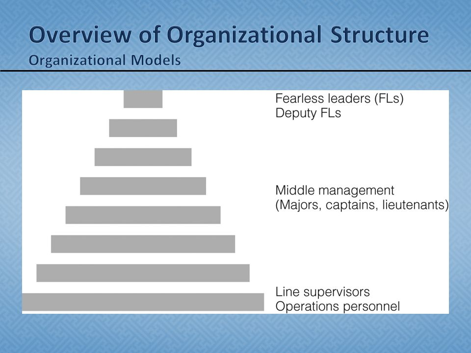 bureaucratic model of organized crime Police - the professional crime-fighting model: when j edgar hoover  work ( eg, vice and, later, organized crime) and by creating a strong bureaucracy that.
