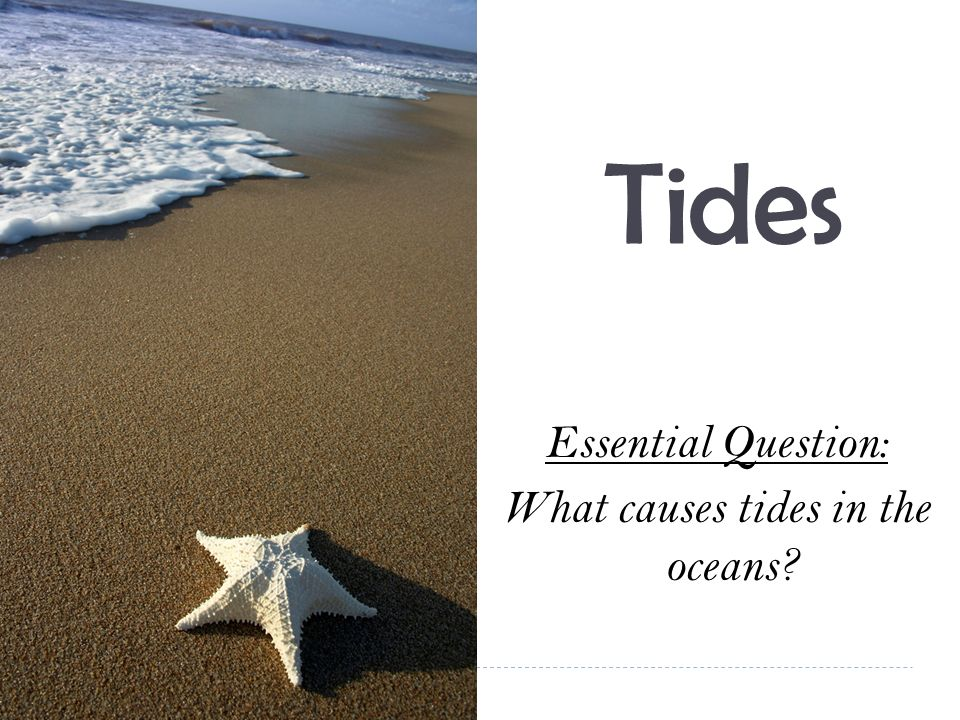 Essential Question: What causes tides in the oceans