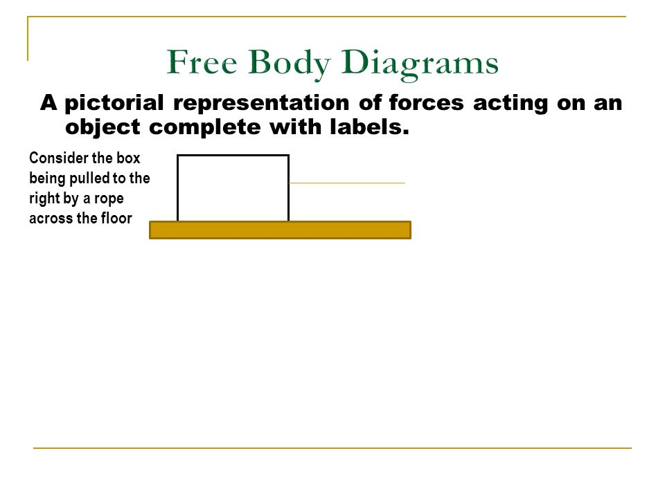 free body diagrams and problem solving ppt video online download rh slideplayer com Female Body Diagram Body Parts Diagram