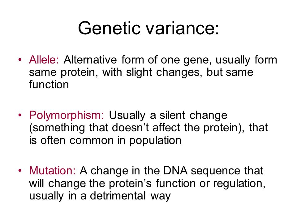 Introduction to Human Genetics - ppt download
