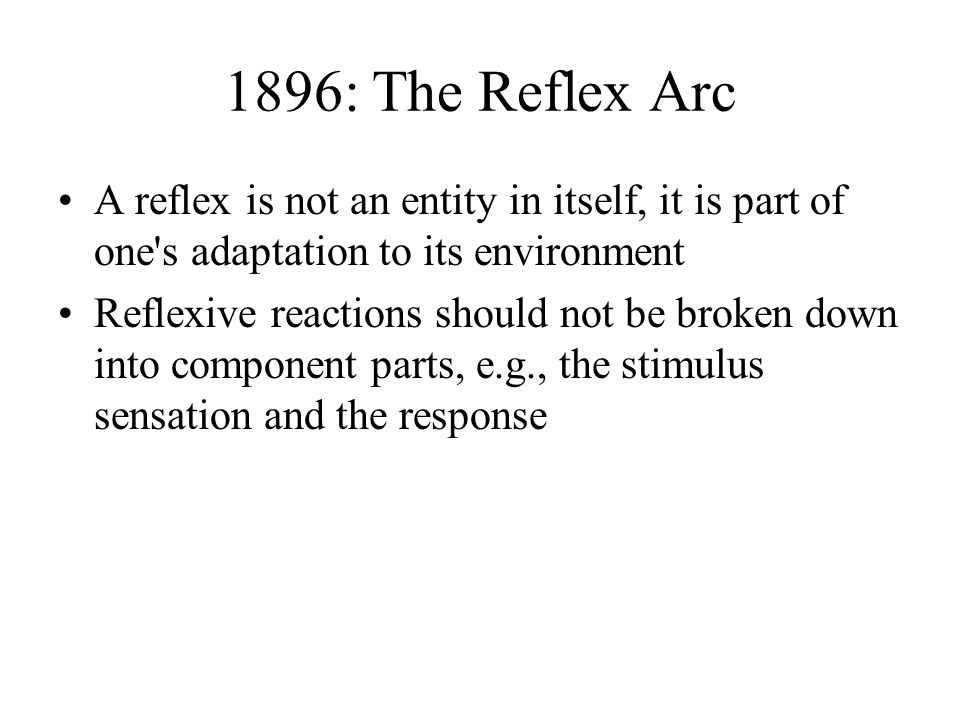The reflex arc essay