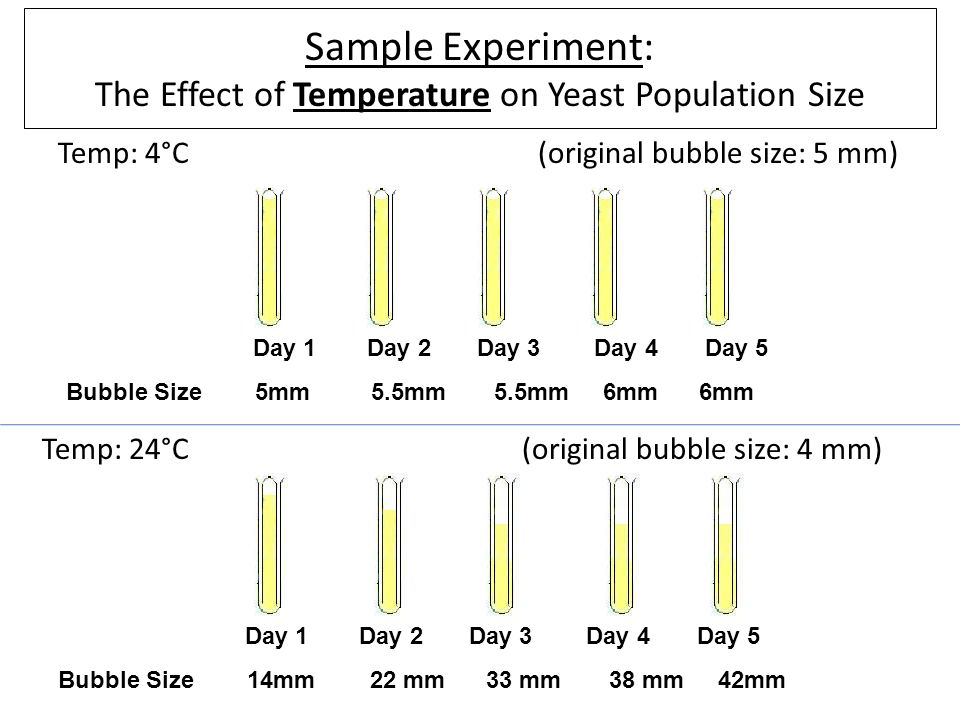 an experiment to determine the effects of sugar types with ph and temperatures Temperature extremes: effect on plant completely determine the impact of warmer temperatures during the effects on plant growth and development is.