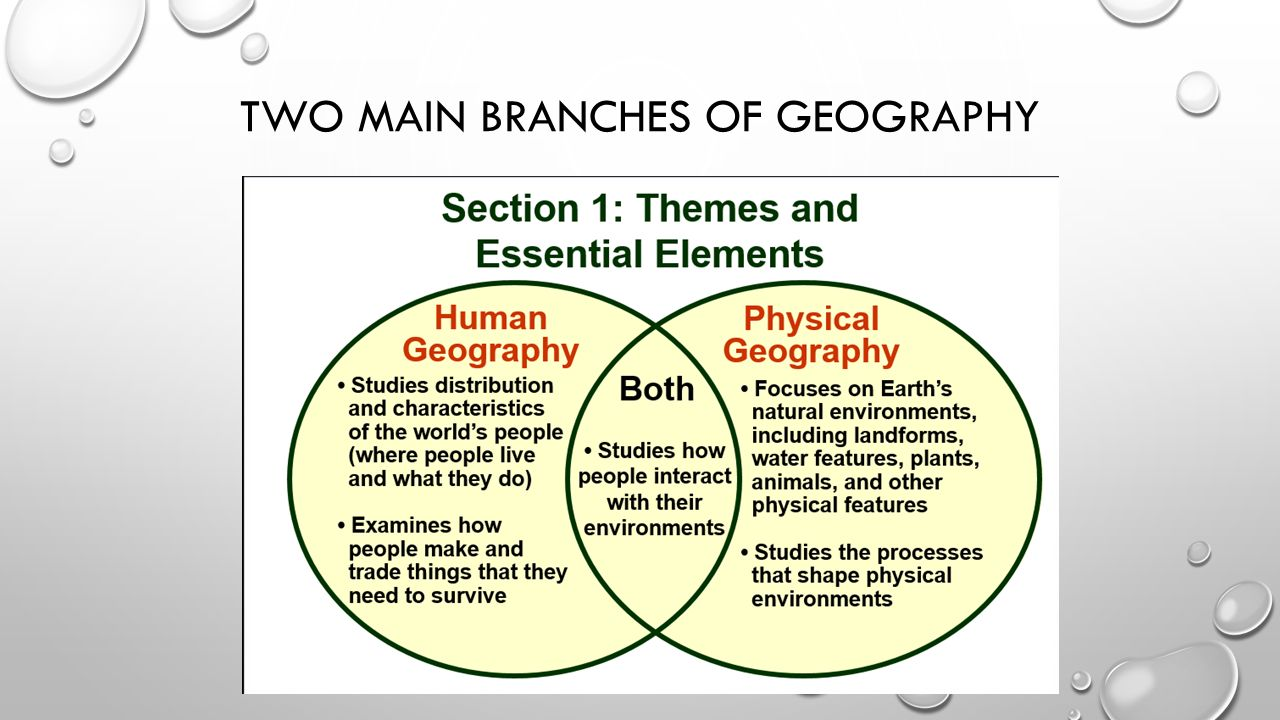 branches of geography
