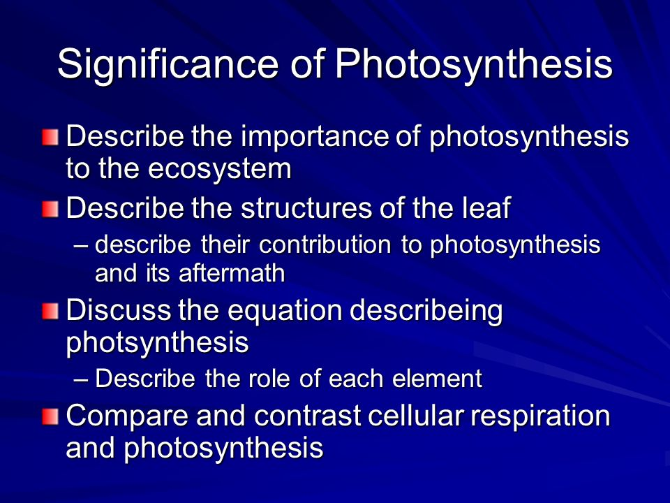 significance of photosynthesis How is chloroplast adapted to carry out photosynthesis in plants chloroplast significance in  made up of light- soluble pigments involved in photosynthesis.