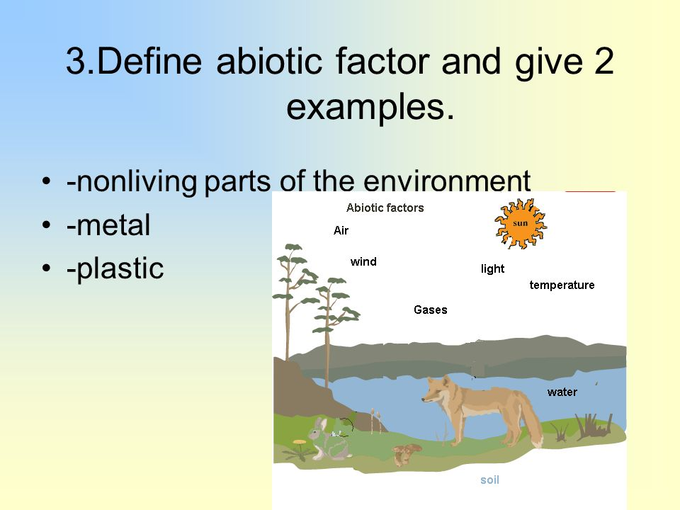 Chapter 4. 2 what shapes an ecosystem? Biotic and abiotic factors.