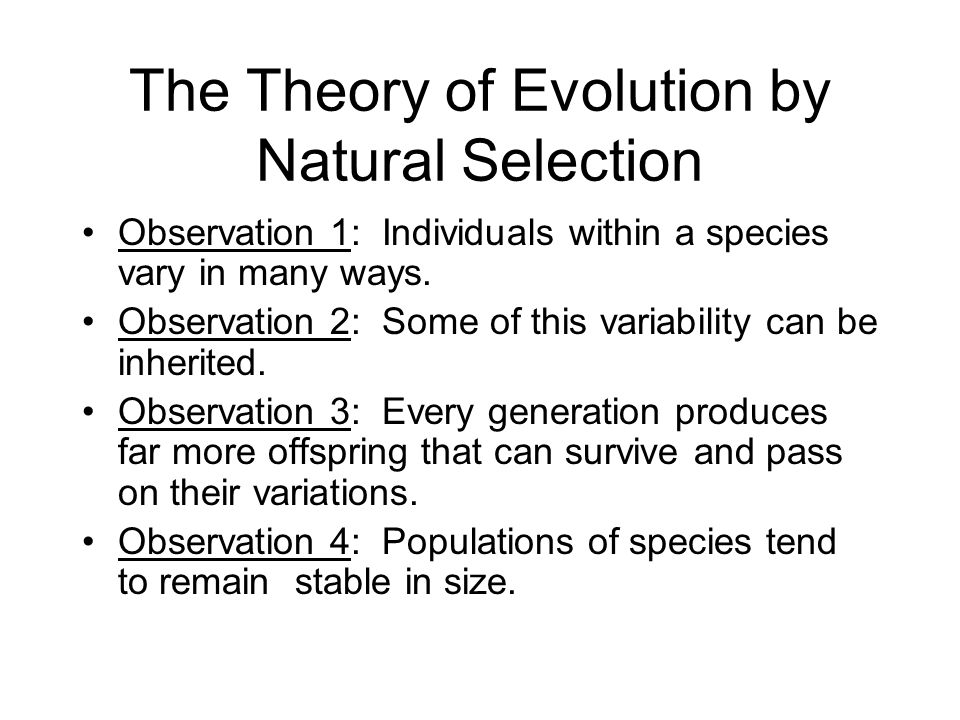 theory of evolution by natural selection essay The guardian - back naturalist and co-discoverer of evolution by natural selection not inspire his theory • he did not send his essay to darwin on.