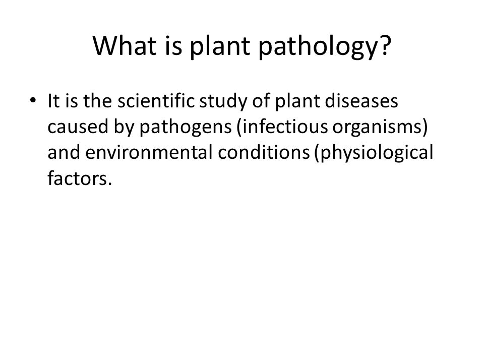 an analysis of disease in plant Plant disease severity estimated visually, by digital photography and image analysis,  the future of image analysis methods for disease measurement .