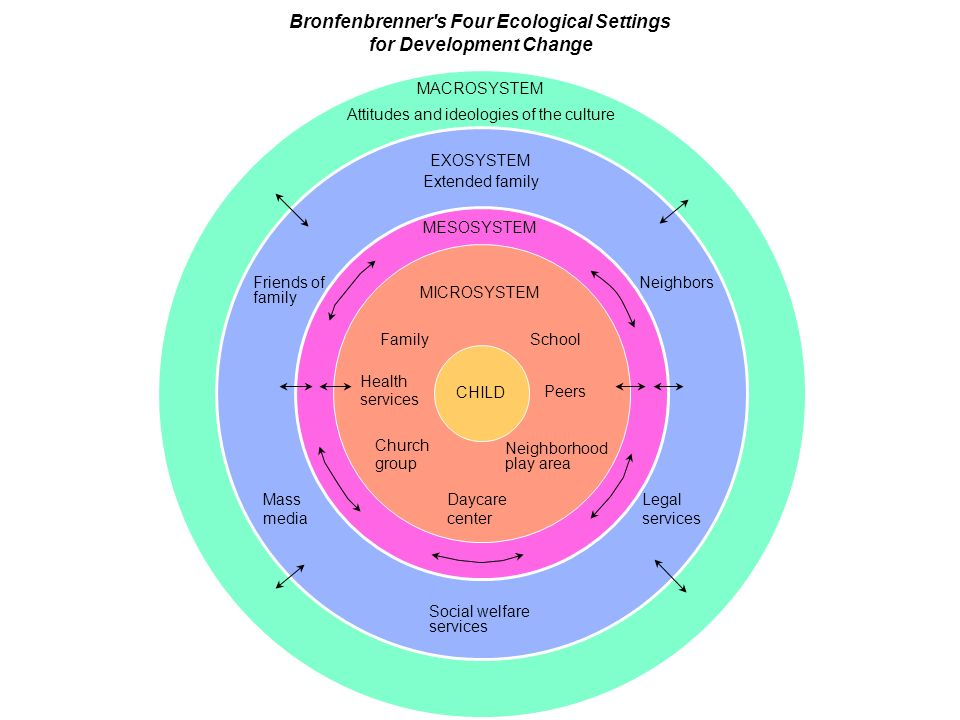 bronfenbrenners four ecological settings for development