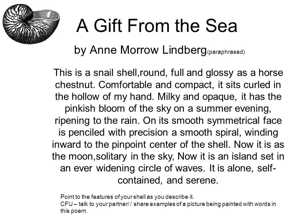 descriptive writing seashells grade 1