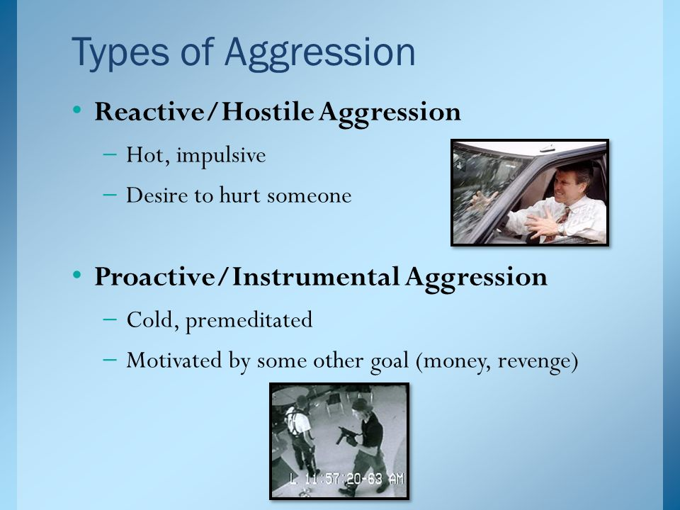 hostility and aggression essay