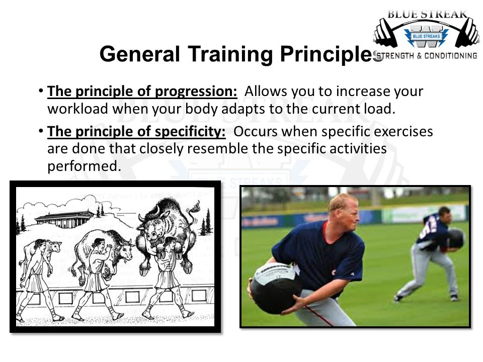 Strength Training 1 2 Final Review Ppt Video Online