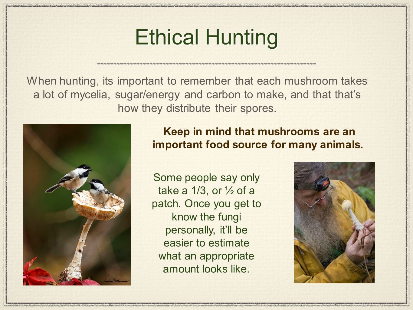 is hunting ethical Hunting is a violent and cowardly entertainment that kills hundreds of millions of animals every year, with many wounded who die a slow and painful death.