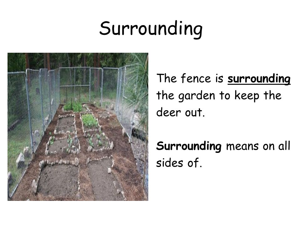 Background Vocabulary Ppt Video Online Download
