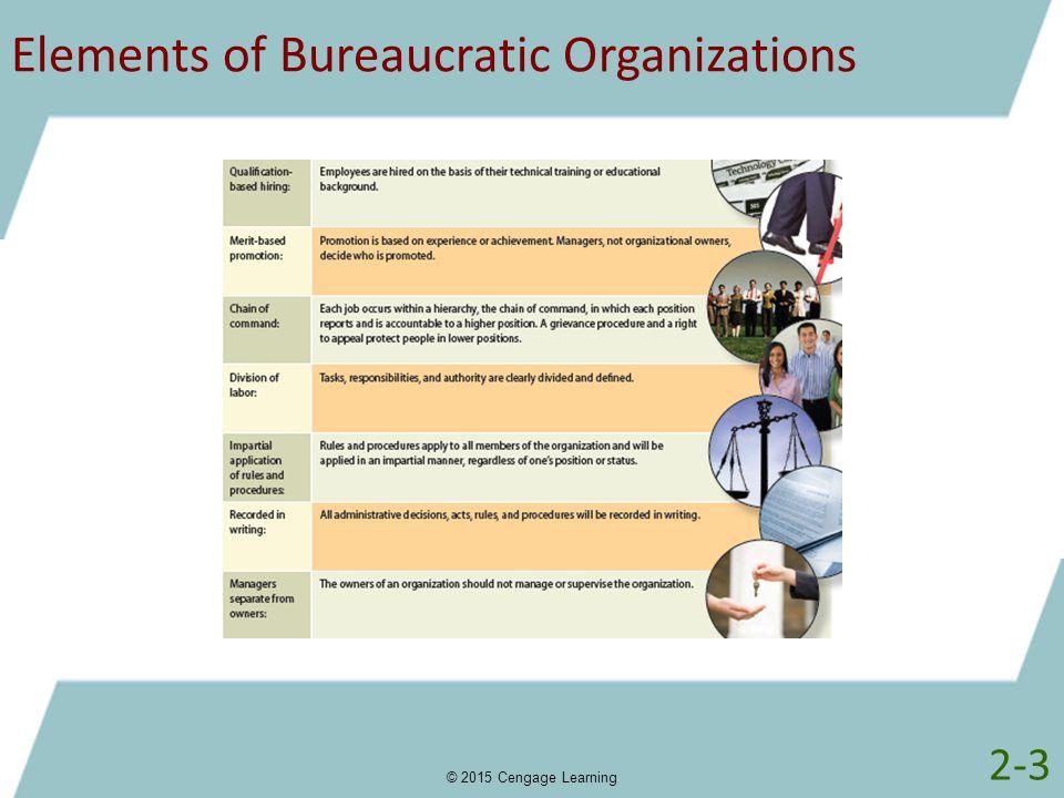 Elements of Bureaucratic Organizations