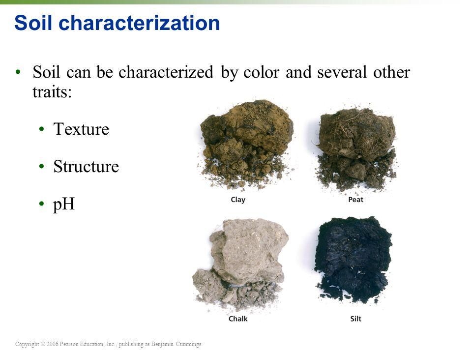 O ppt video online download for Mineral soil vs organic soil