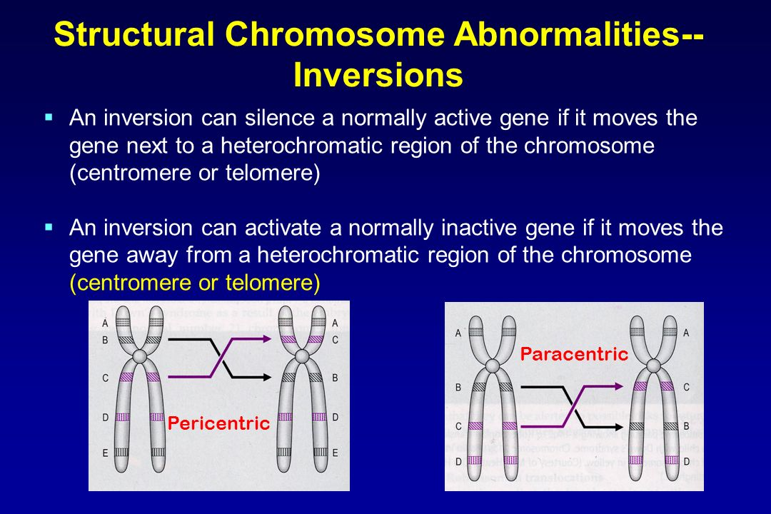 Structural Chromosome Abnormalities--Inversions