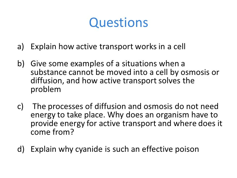 Active Transport B4d ppt download – Active Transport Worksheet