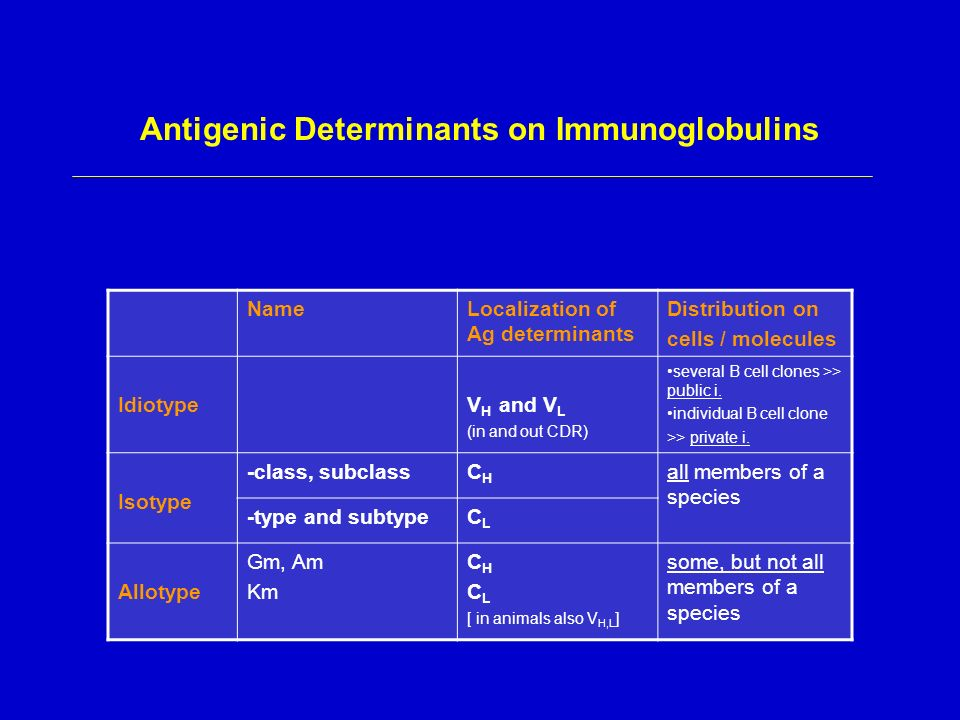 Antigenic determinant definition