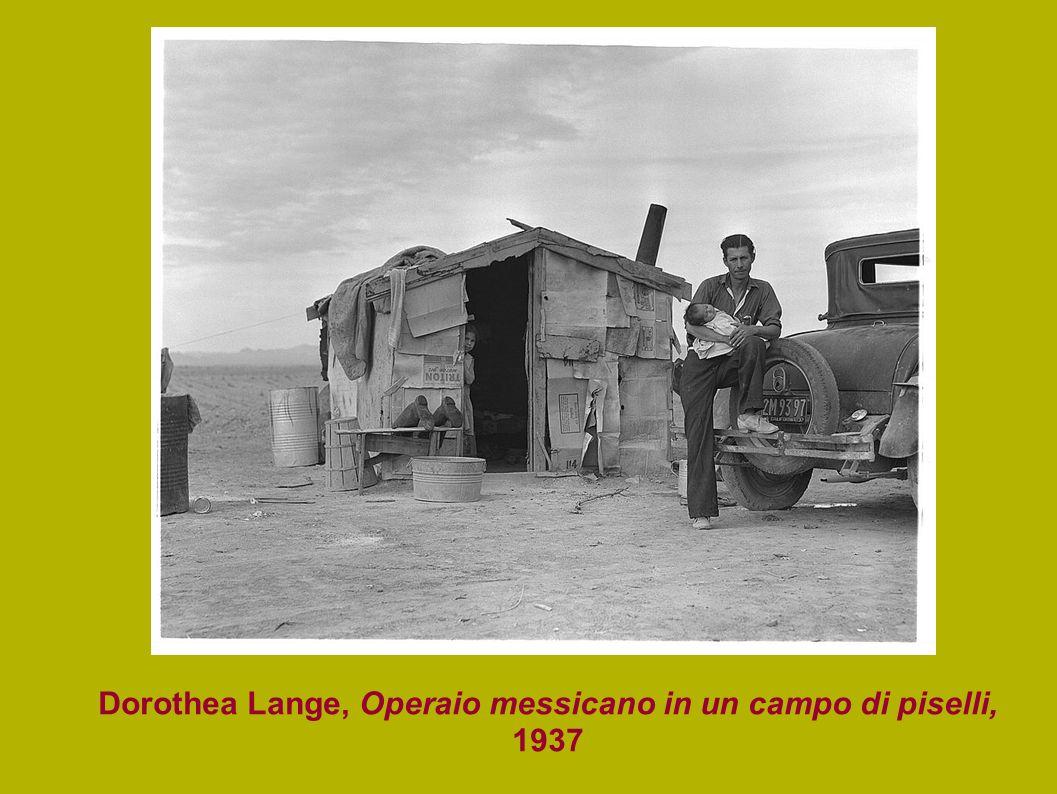 Dorothea Lange, Operaio messicano in un campo di piselli, 1937