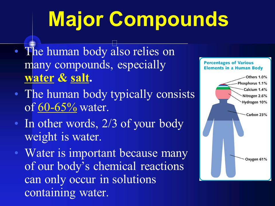 biology the five major compounds In biology, an organism (from they cannot synthesize and organize the organic compounds from which they survey of representatives of the major kingdoms.