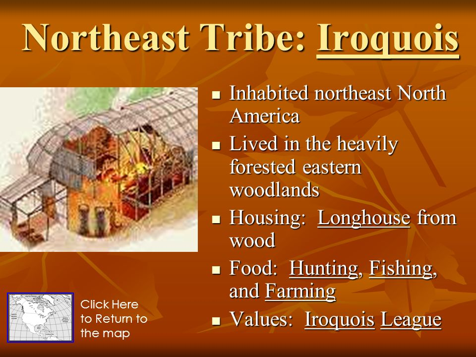 Native Americans Sol S Usi 3a And 3b Ppt Video Online Download