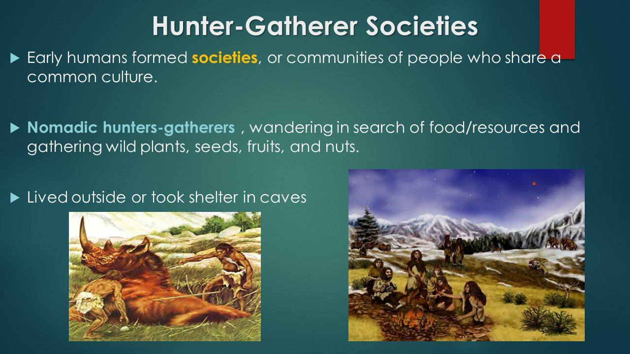 the cultures and settings of the hunters and gatherers Hunter-gatherer societies are – true to their astoundingly descriptive name –  cultures in which human beings obtain their food by hunting, fishing,  roving  around and setting themselves up in caves not just in africa, but also.