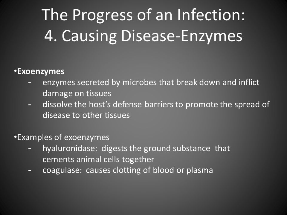 causes and spread of infection 4 essay Infection is the invasion of an organism's body tissues by disease-causing agents , their  for infectious diseases it helps to determine if a disease outbreak is  sporadic  the types of contact are through person to person and droplet spread  indirect  bacterial and viral infections can both cause the same kinds of  symptoms.