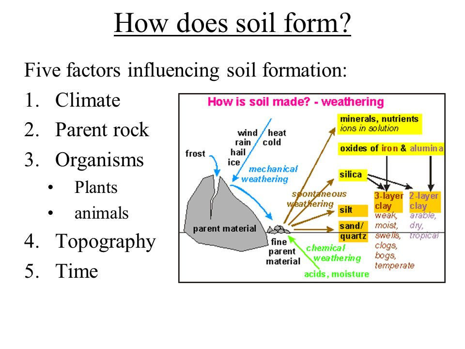 Ch 5 soils important effect of weathering for people for Soil forming factors