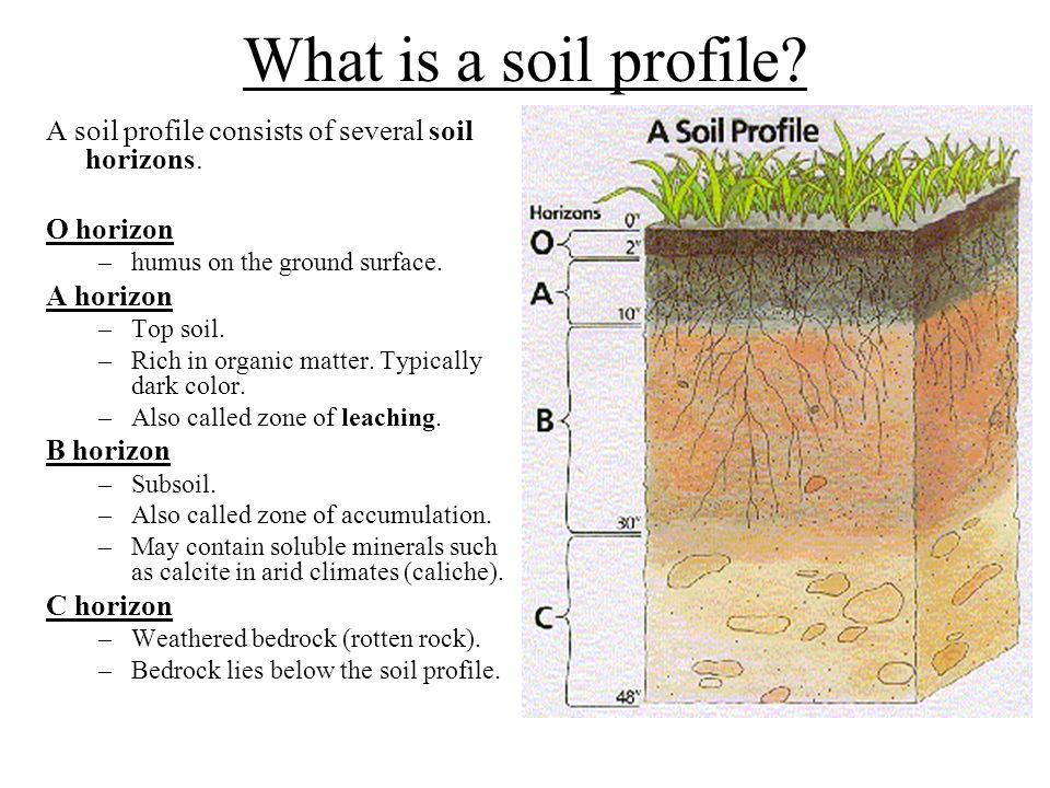 Ch 5 soils important effect of weathering for people for 4 parts of soil