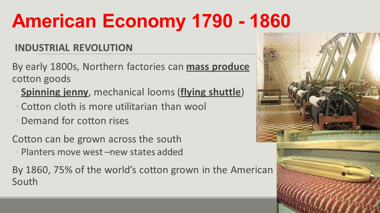 the role of the slaves in the american economy The slave trade in the caribbean and latin america,  also discuss the role and impact of the slaves—economic, cultural, political.