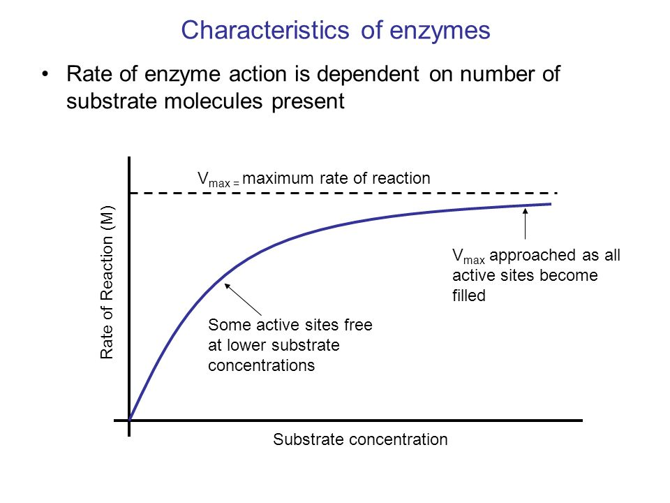 the characteristics of catalase an enzyme Is of essential importance in estimating the impact of fire on plant characteristics and  enzyme catalase and the content of chlorophyll20–22.