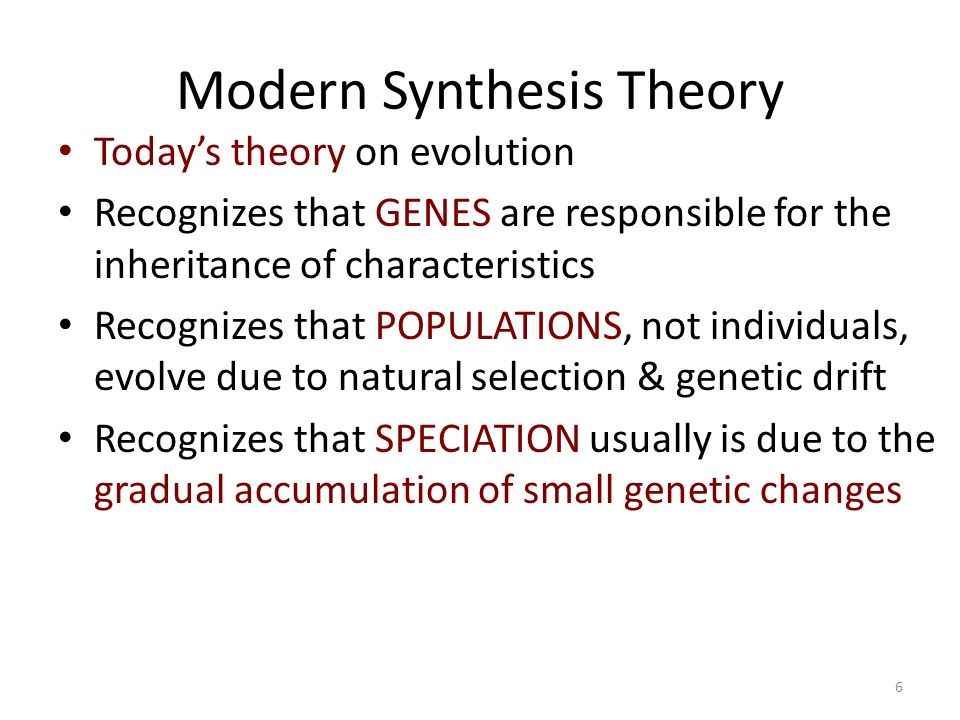 modern synthesis theory Evolution: theory in reveals in detail how natural selection works and led to the development of the modern theory of evolution extending the synthesis of.